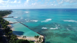 ハワイの青い海の画像